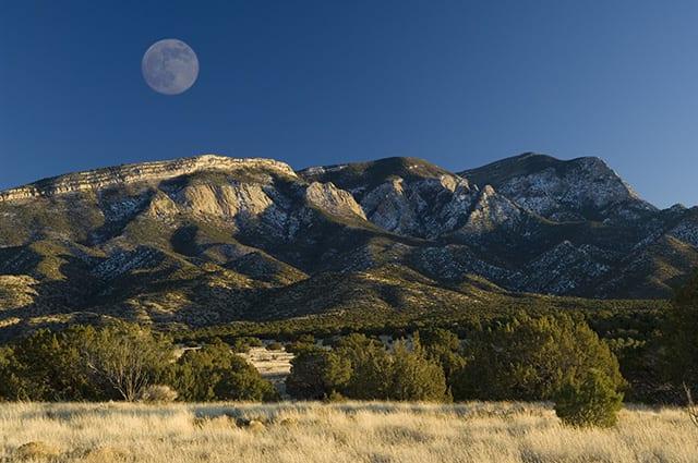 rio-rancho-mountain-hawk